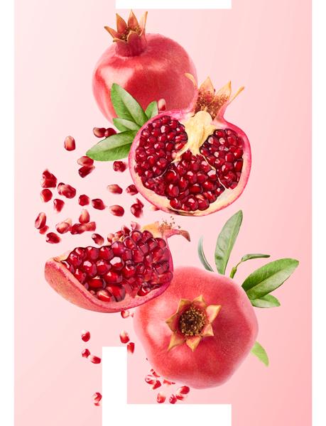 Topsi Produkte Nahrungsergänzung Proceanis Hyaluron Drink